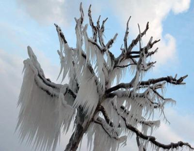 ice_storm04